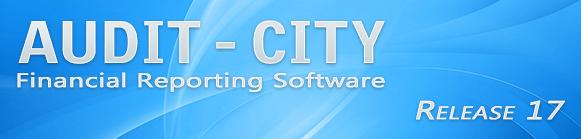 Audit_City_banner_2020